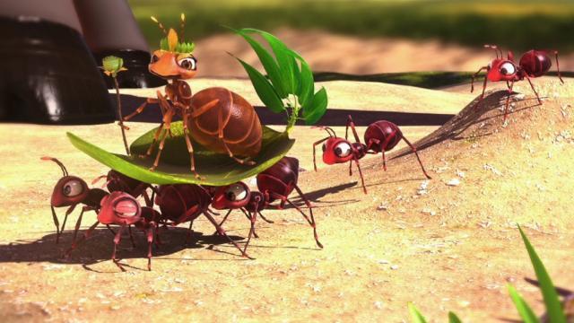 MTS  - Ants